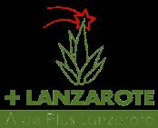 Aloe Plus Lanzarote Navidad